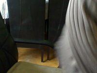 Webcamsex foto van snoepgoe50